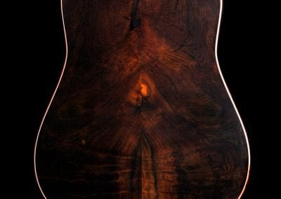 elexis-reigns-custom-dread-wr-custom-guitar-2