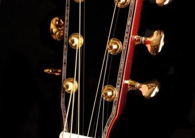 elexis-reigns-custom-dread-wr-custom-guitar-3